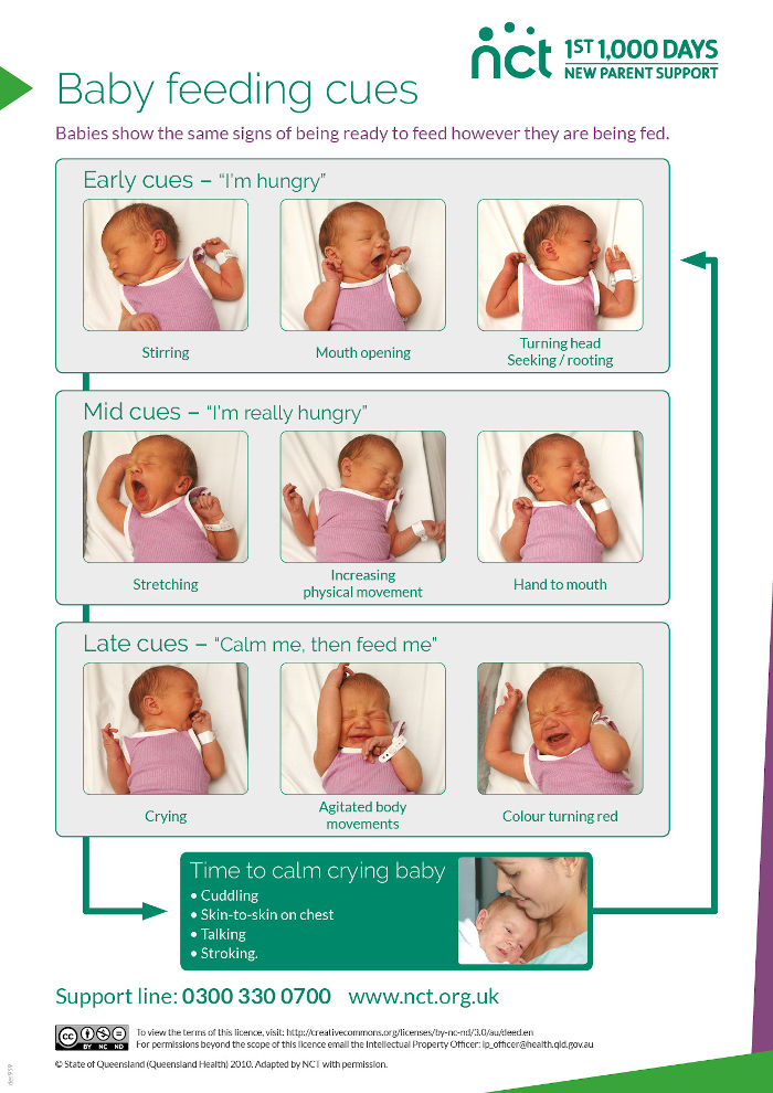 Baby feeding cues in pictures