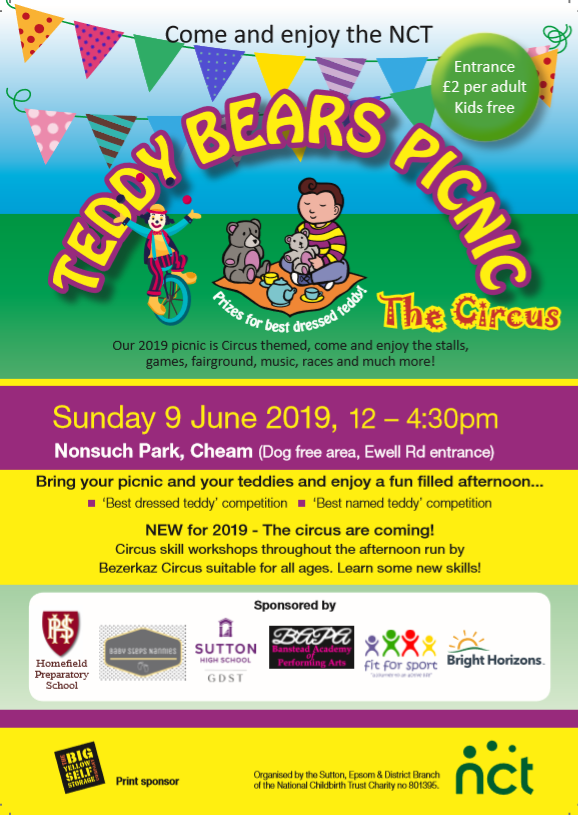 Teddy Bears Picnic flyer