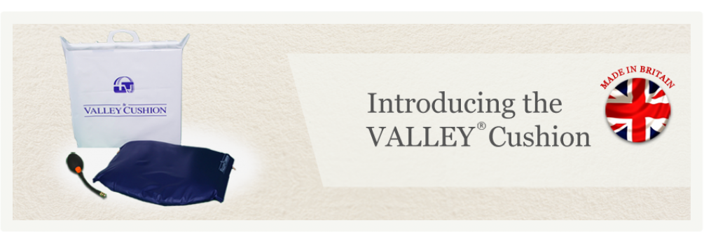 The Valley Cushion