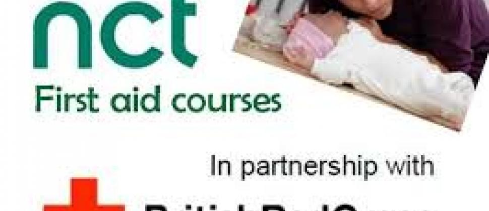 NCT Salisbury Online First Aid Course with British Red Cross