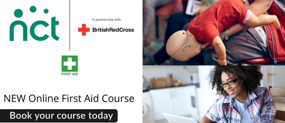 Image shows Fist aid session conducted by British Red Cross online